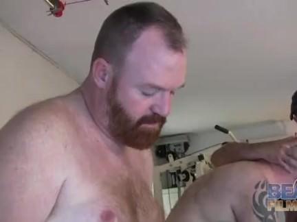 Gay Orso orgia